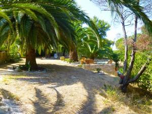 Vue du parc de la villa Upozzu